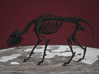 Black Shuck Skeleton 3d printed