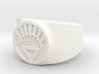 White Life Ver 2 GL Ring Sz 13 3d printed