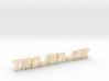 Trojan Joe 3d printed