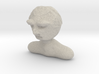 Dr Who Peter Capaldi Charcture  Bust 3d printed
