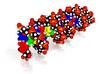 """Custom DNA Molecule Model Charlie A, Size = """"Huge"""" 3d printed"""