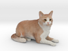 Custom Cat Figurine - Jupiter 3d printed