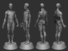Anatomy Body 3d printed FULL Assemble Preview