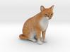 Custom Cat Figurine - Hunter 3d printed