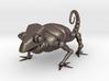 ROBOTIC CHAMALEON 3d printed