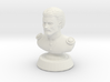 Duke de crecy bust - neutral color man 3d printed