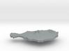 Niger Terrain Silver Pendant 3d printed