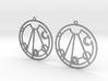 Lindsay - Earrings - Series 1 3d printed