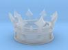 Champion's Crown 3d printed