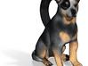Custom Dog Earrings - Sasha 3d printed