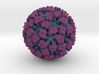 Feline Calicivirus radial colour 2Mx mag 3d printed