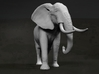 African Bush Elephant 1:45 Walking Male 3d printed