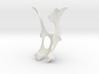 Bobcat Hip Bone 3d printed