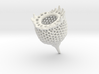 Lamprocyclas Isosurface 1b (extracted) 3d printed