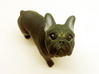 Looking Up Brown Frenchie  3d printed