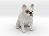 Custom Dog Ornament - Rocky 3d printed
