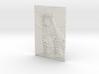 3D Amur Leopard Stare 3d printed