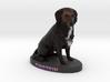 Custom Dog Figurine - Einstein 3d printed