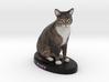 Custom Cat Figurine - Baby 3d printed